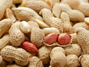 14119735-peeled-peanut-andl-peanuts-in-shell-studio-shot